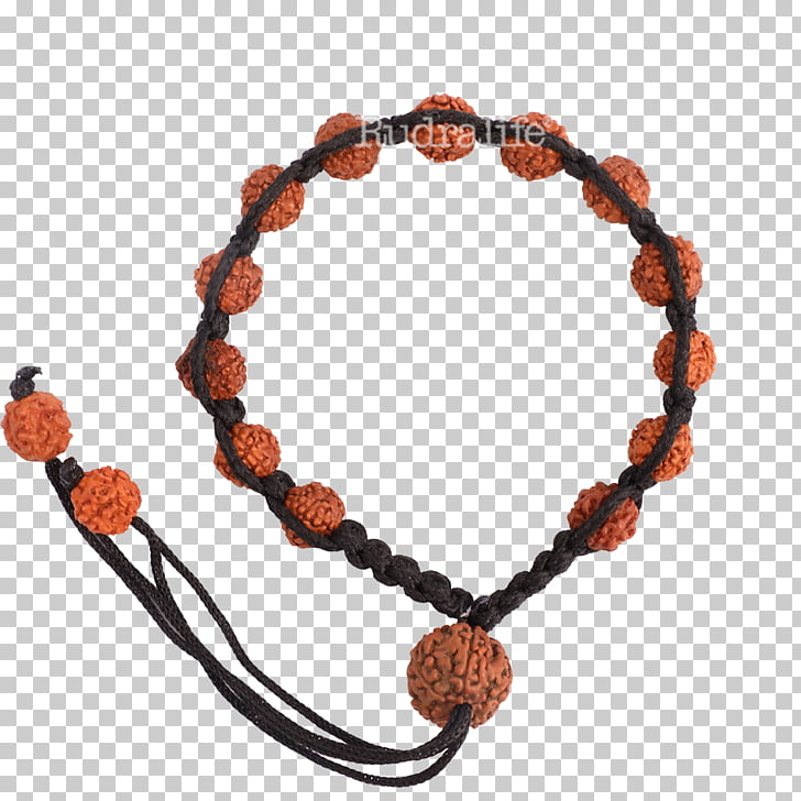 Bracelet Bead Rudralife Jewellery Rudraksha, Rudraksha PNG.