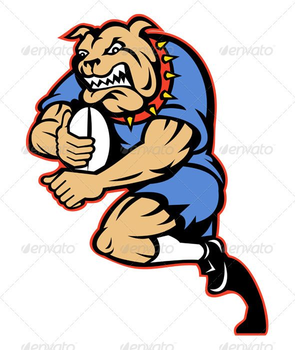 Bulldog Rugby Player Running With Ball.