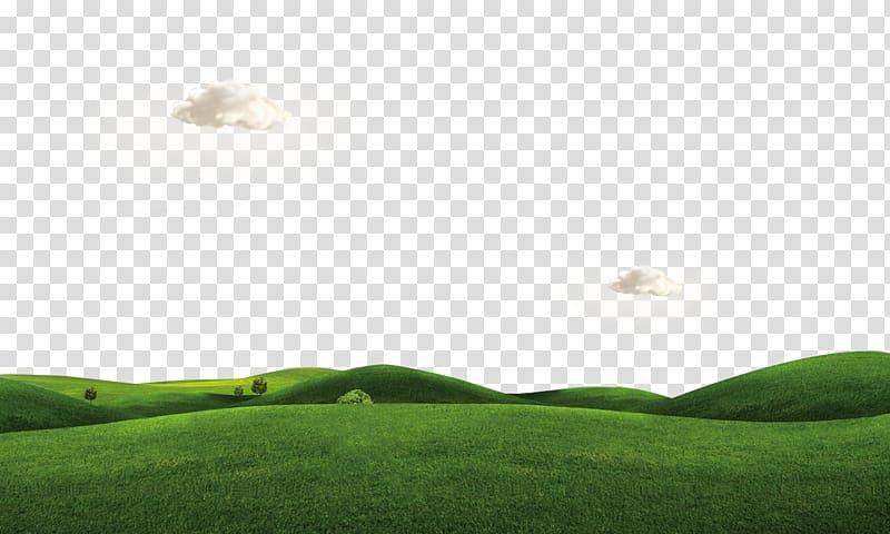 Green grass field under blue sky illustration, Lawn , Rumput.
