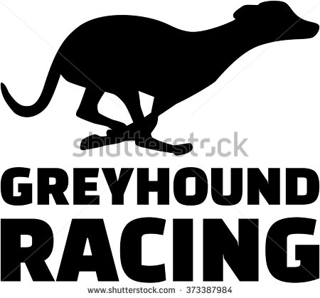 Greyhound Stock Images, Royalty.