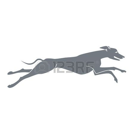95 Sighthound Stock Vector Illustration And Royalty Free.