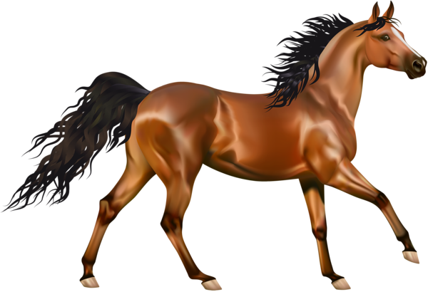 Brown #Horse #Clipart.