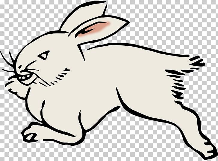 Domestic rabbit Hare , Long Running Rabbit Animal World PNG.