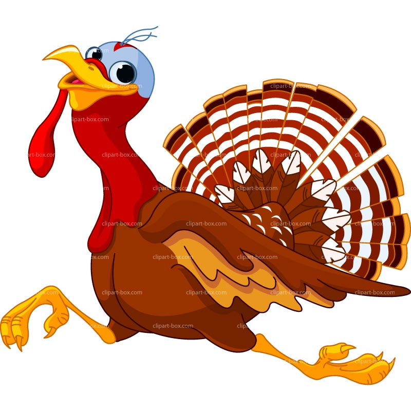 CLIPART RUNNING TURKEY.