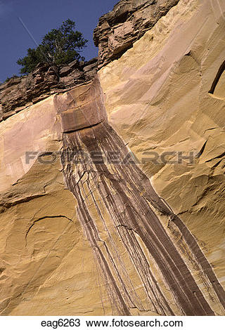 Stock Photo of Runoff has stained the wall of ECHO CANYON, a.