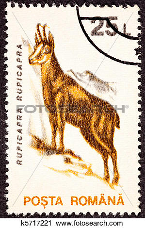 Clipart of Romanian Postage Stamp Goat, Antelope Chamois.