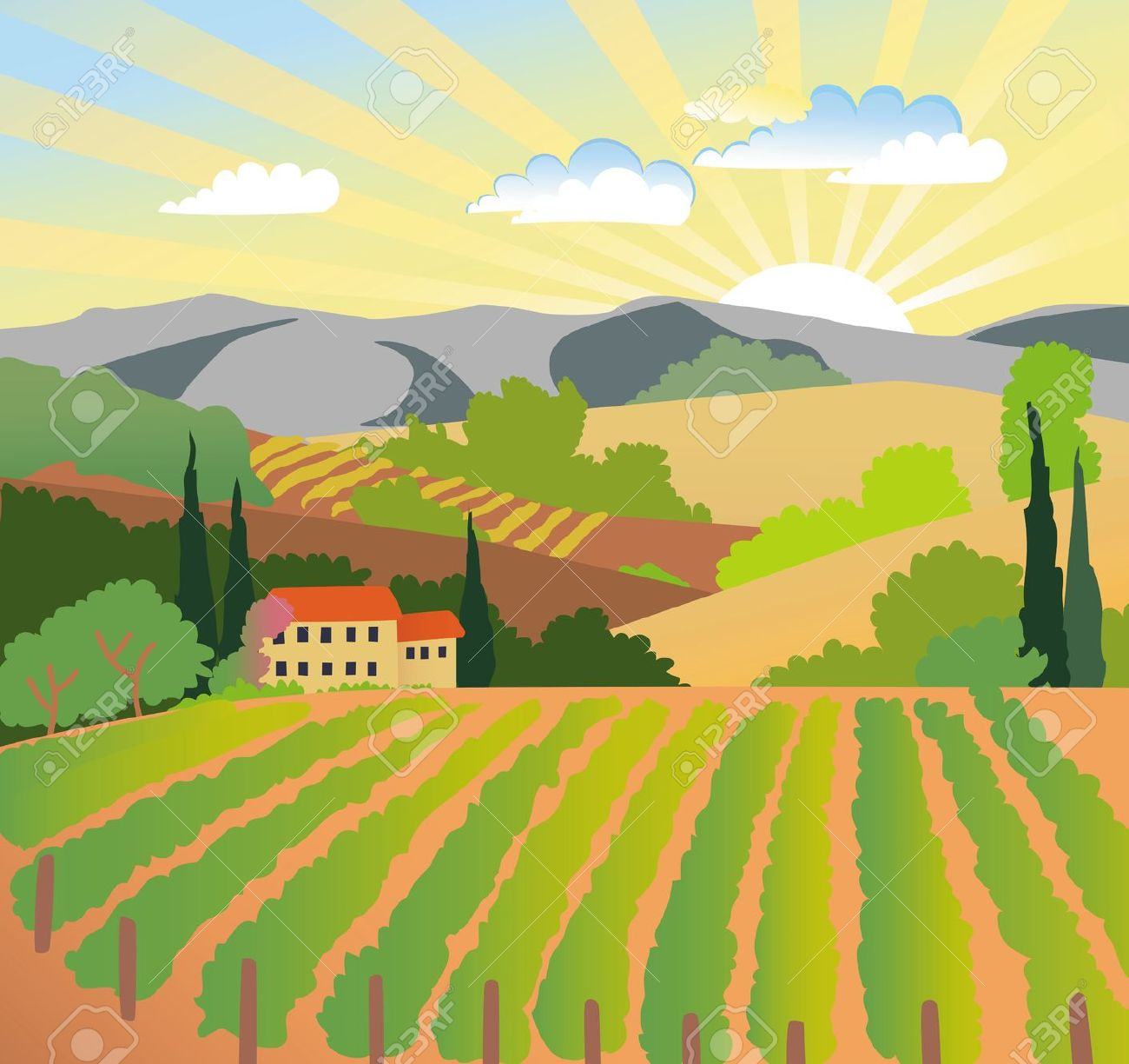 Summer Solar Rural Landscape With A Sunset, Vineyard And Mountains.