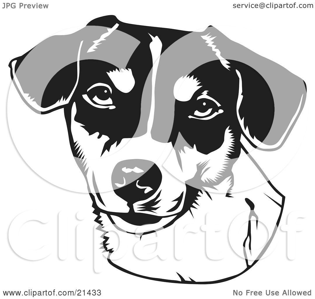 Similiar Jack Russell Clip Art Black And White Keywords.