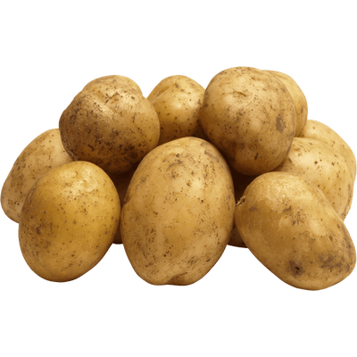 Single Potato transparent PNG.