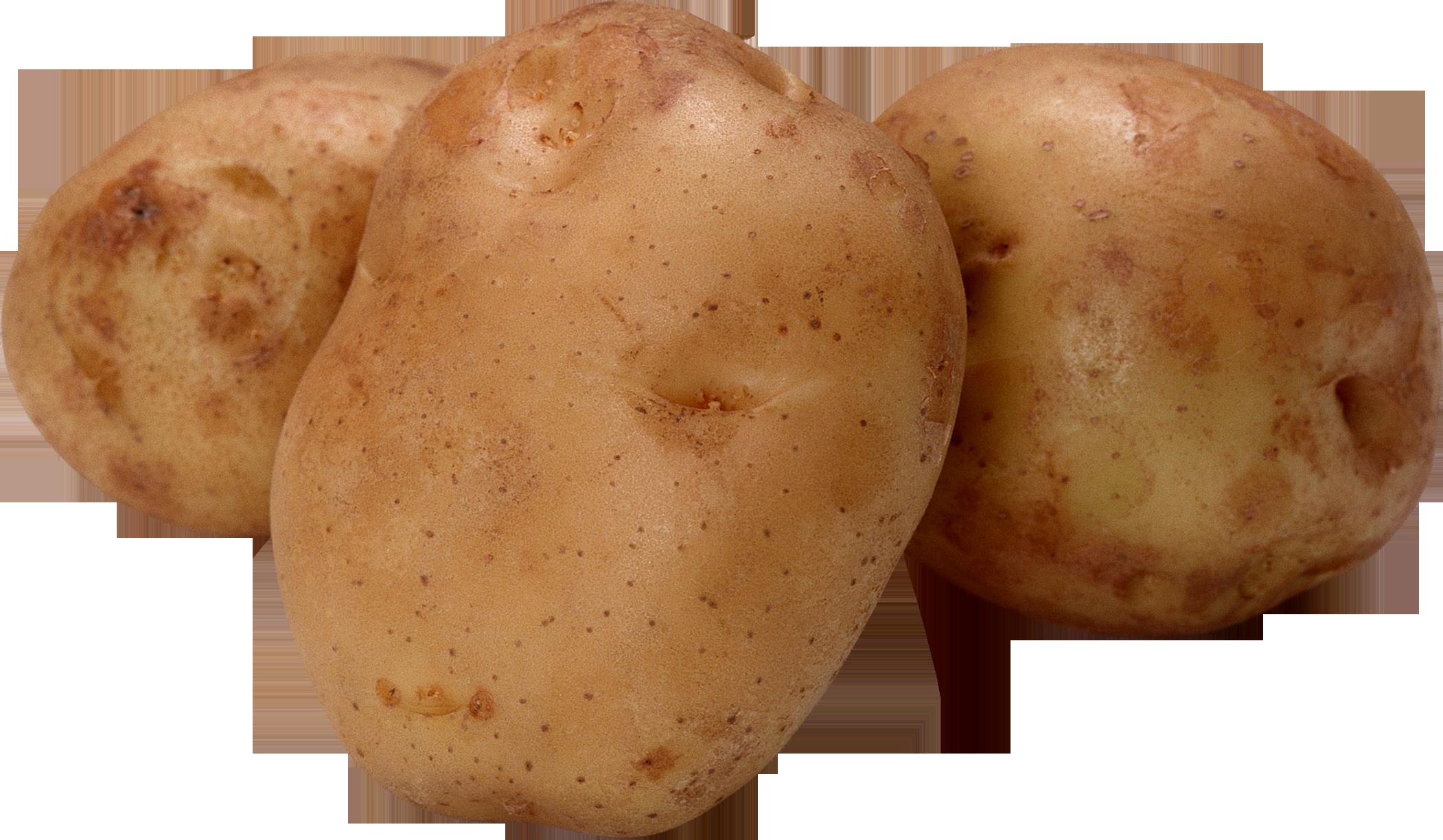 Potatoes Clipart Png.