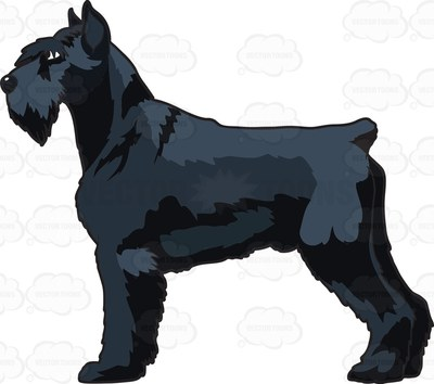 Russian Bear Schnauzer Cartoon Clip Art.