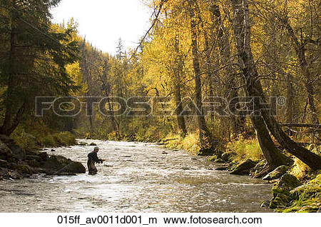 Stock Photo of Flyfisherman on Russian River Kenai Peninsula.