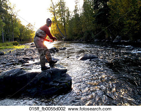 Stock Photo of Woman fly fishing for Rainbow trout on the Russian.