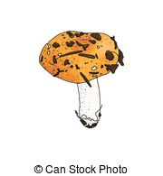 Russula Illustrations and Clipart. 57 Russula royalty free.