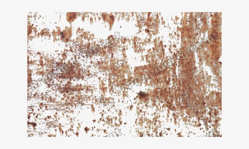 Environment Textures Show Photos.