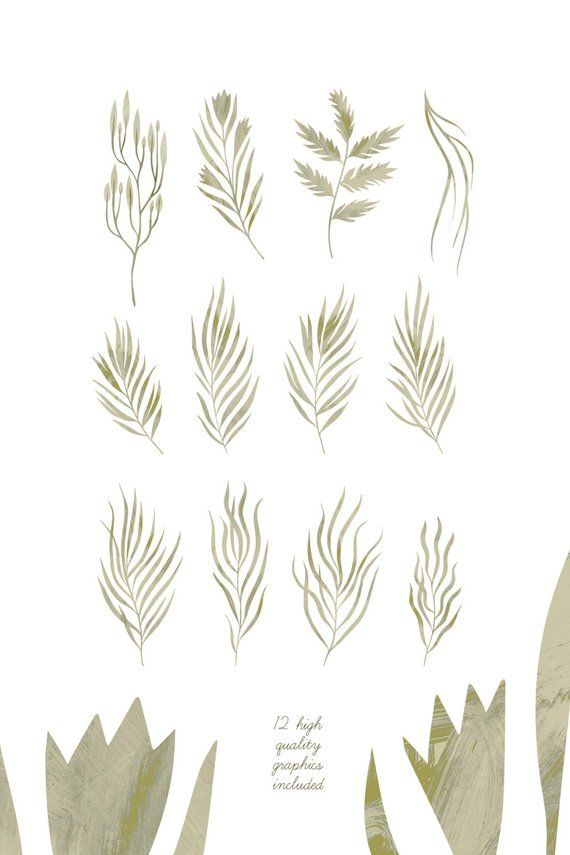 Hand drawn Rustic Leaves clipart set.