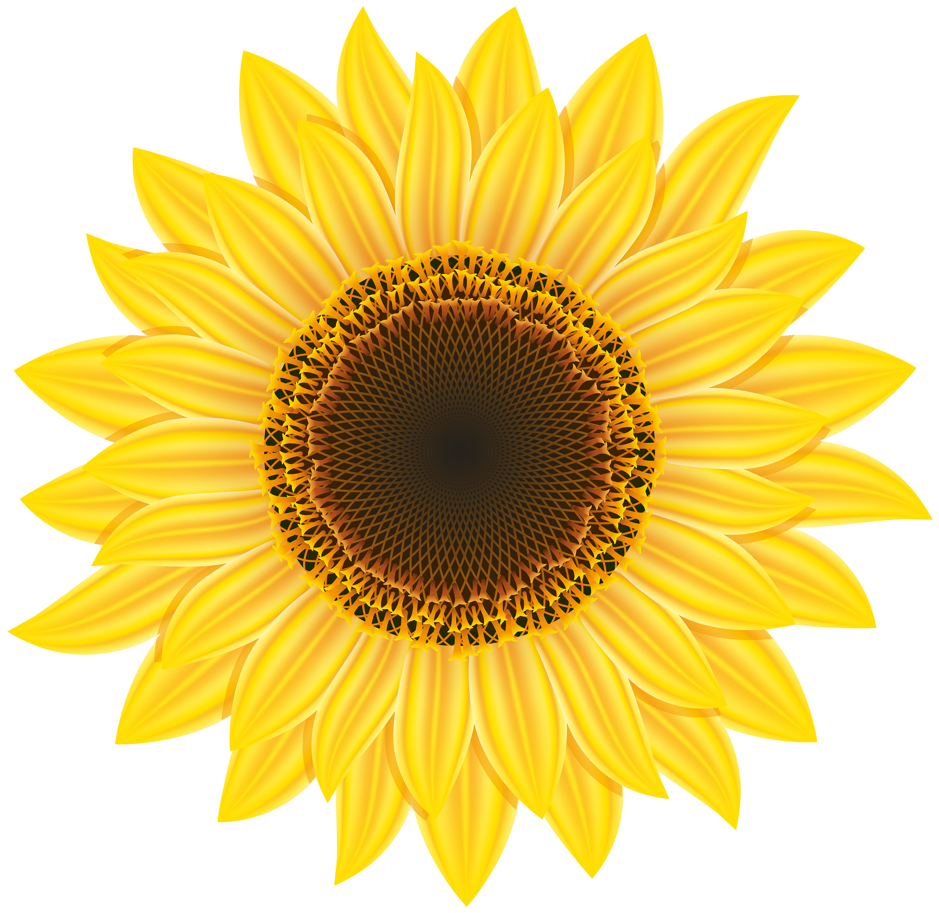 Free Sunflower Clipart Png, Download Free Clip Art, Free.