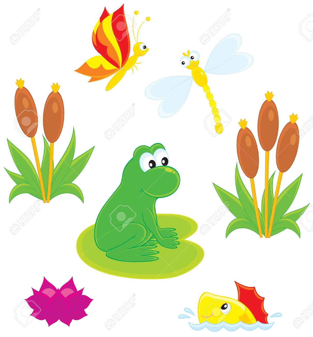 Water Lily Pond Clipart.