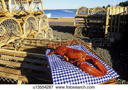 Picture of Cooked Lobster on wharf, North Rustico, Prince Edward.