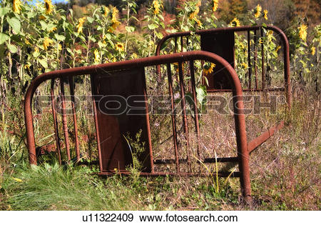 Stock Photograph of Rusty Red Bed Frame Resting In The Middle Of A.