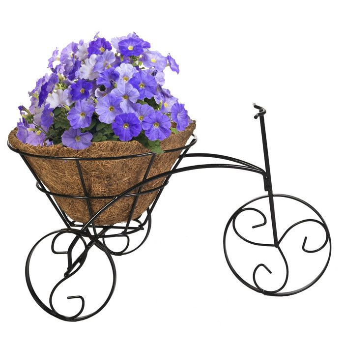 1000+ ideas about Wheelbarrow Planter on Pinterest.
