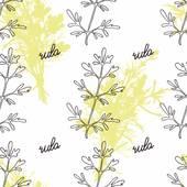 Rutaceae Clip Art.