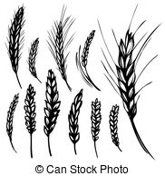 Rye Illustrations and Clipart. 5,724 Rye royalty free.