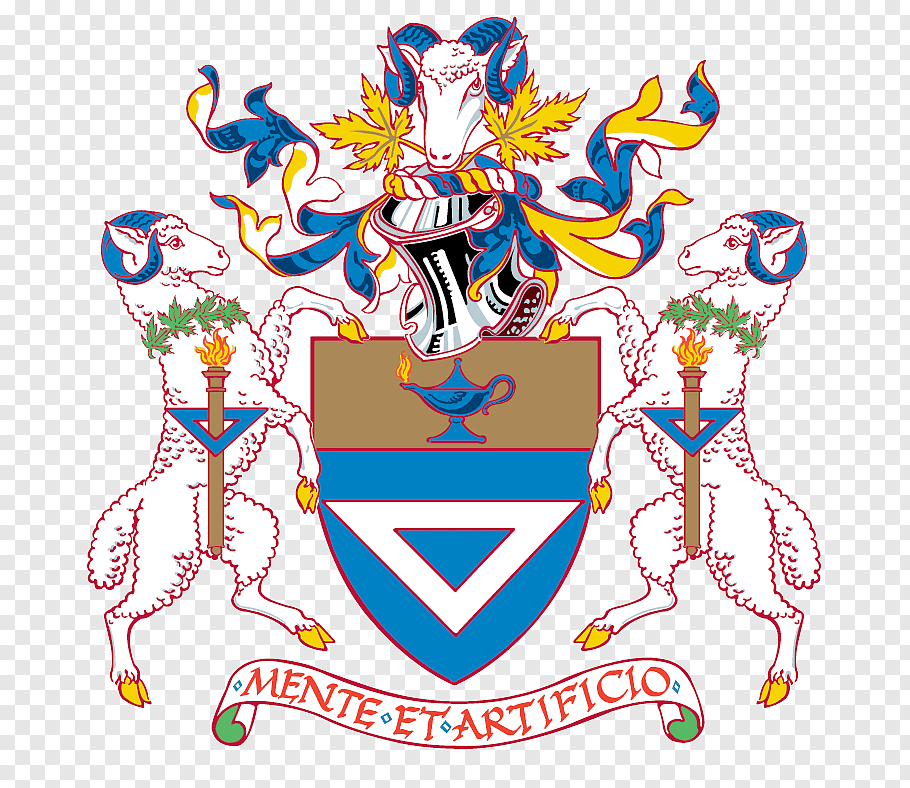 Ryerson University York University McMaster University.