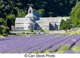 Stock Images of Senanque abbey, Provence, France csp27595852.