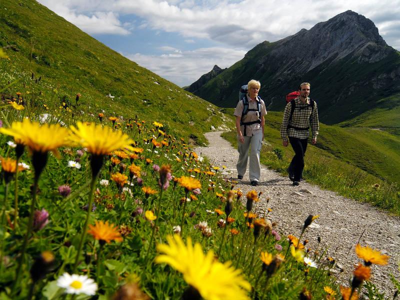 Allgäu Alps.