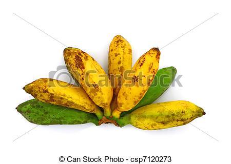 Stock Photos of Saba Banana.