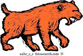 Saber tooth tiger Clip Art Illustrations. 135 saber tooth tiger.