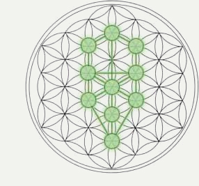 Showing post & media for Tree sacred geometry symbols.