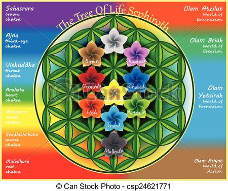Sacred Geometry Tree Of Life Clipart.