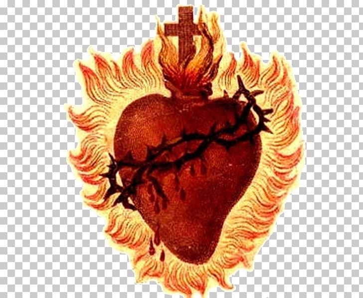 Sacred Heart Prayer First Friday Devotion Morning offering.