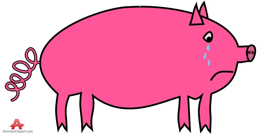 Sad Pig.