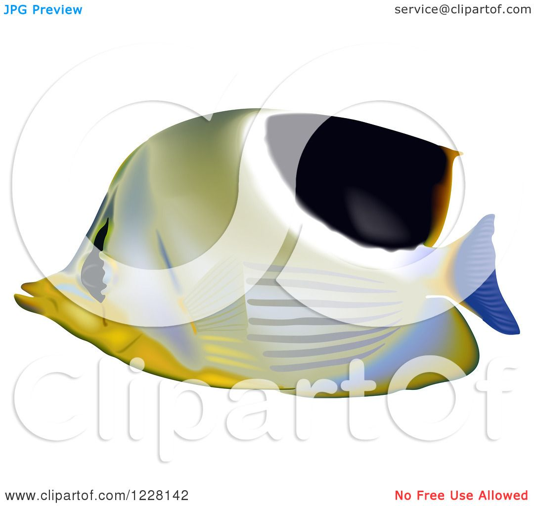 Clipart of a Saddleback Butterflyfish.