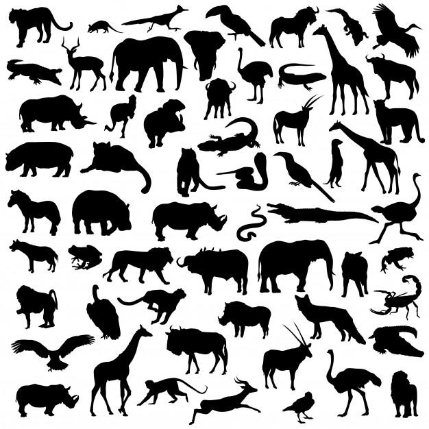 Africa safari animals wild life silhouette clip art Vector.