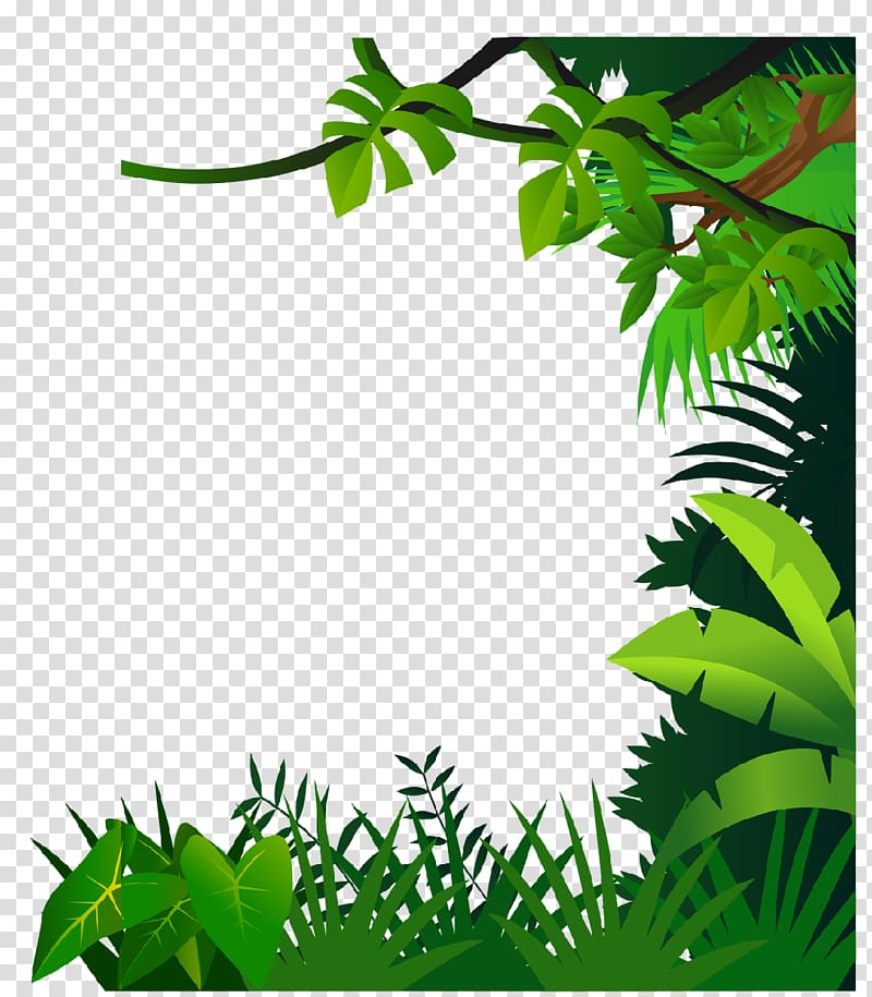 Green leafed plants illustration, Drawing Jungle , border.
