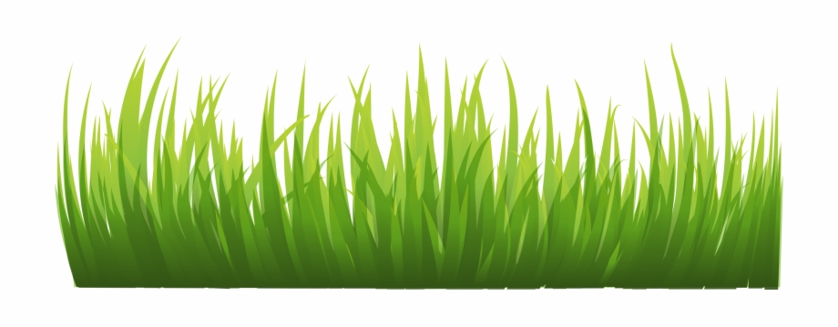 Grass clipart safari, Grass safari Transparent FREE for.