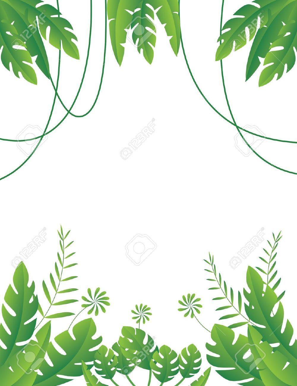 Jungle clipart jungle foliage #1 in 2019.