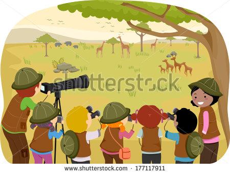 Safari Park Stock Vectors, Images & Vector Art.