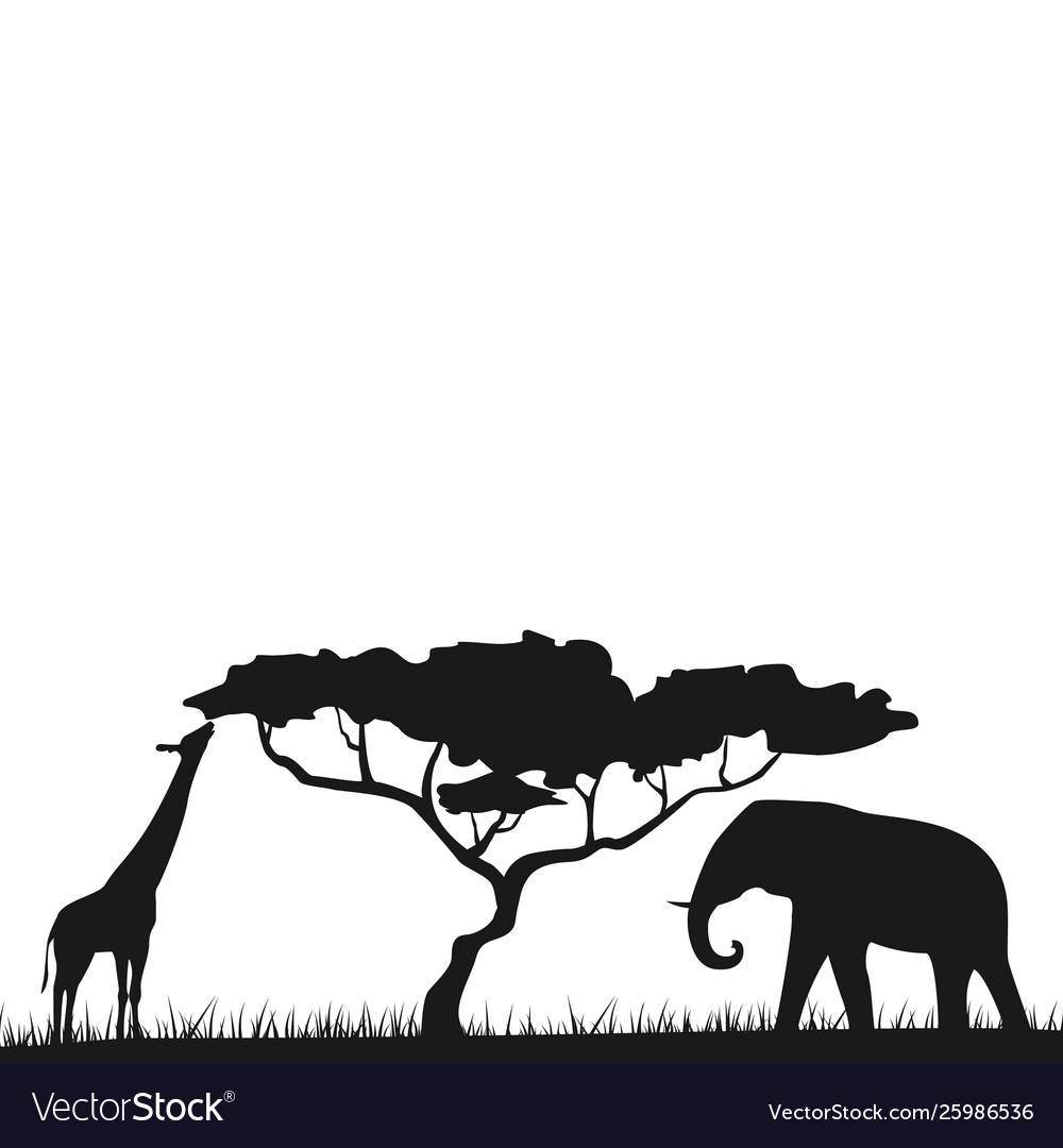 An african safari animal savannah silhouette.