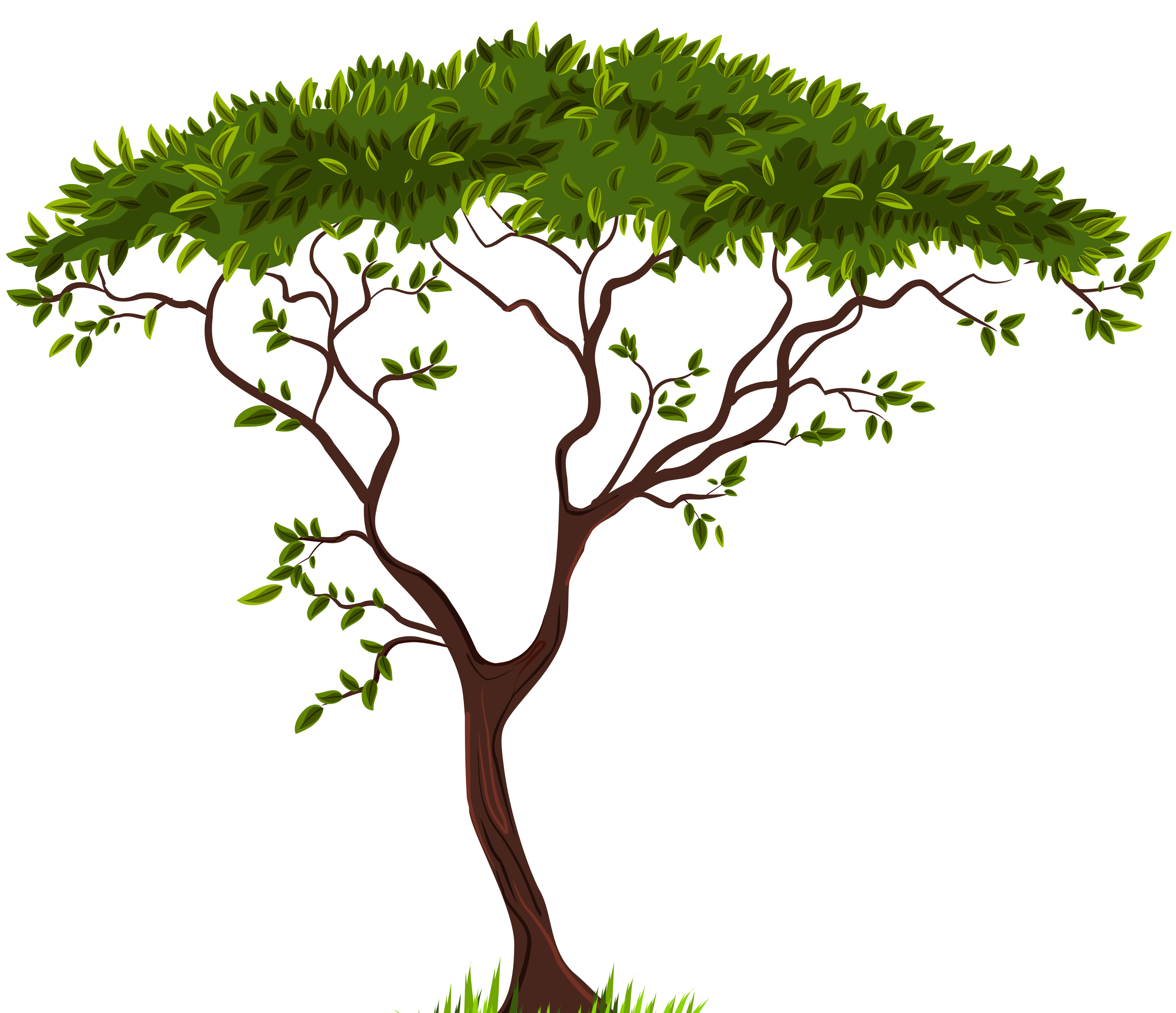 Exotic Tree PNG Clip Art.