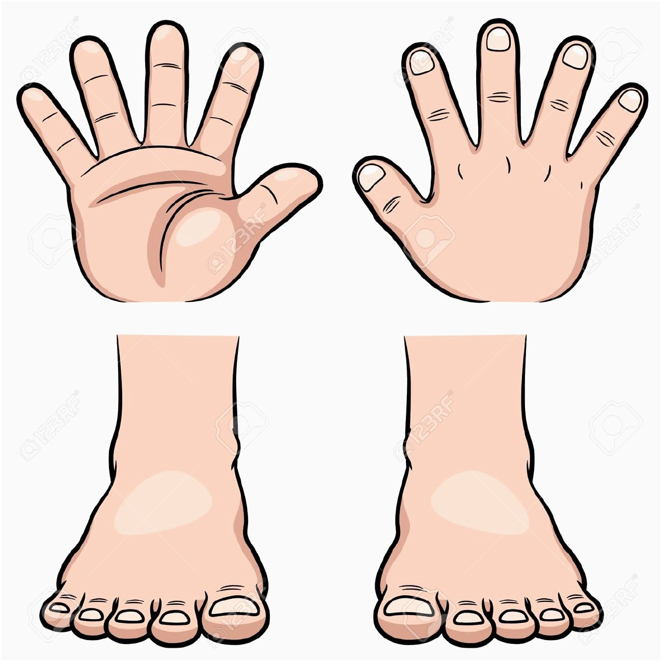 Hands And Feet Clipart.