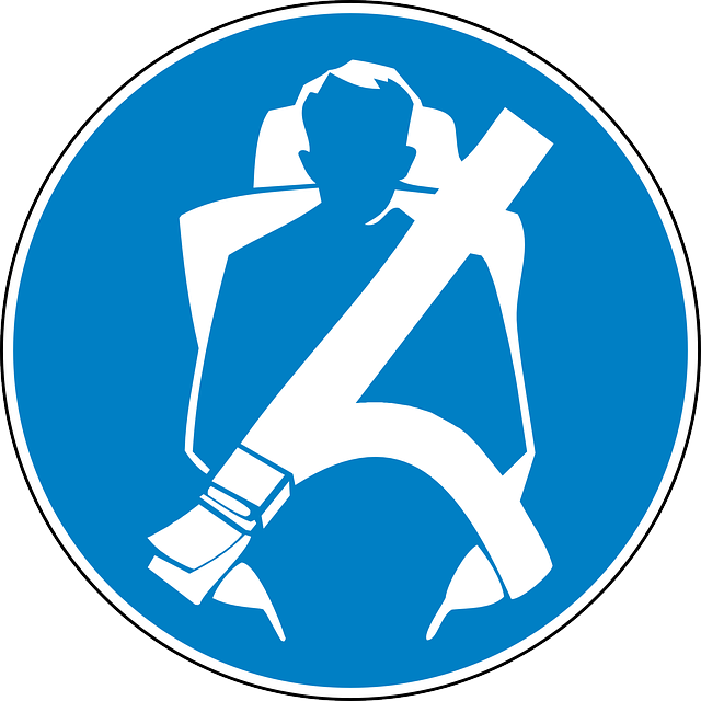 Car seat belt clipart.