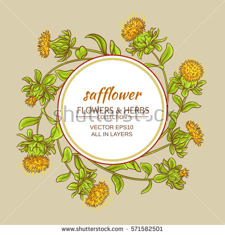 Safflower Stock Images, Royalty.