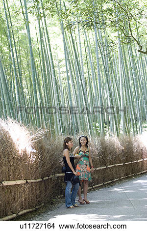 Stock Photo of Two young women standing in bamboo forest, Sagano.
