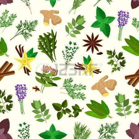 1,616 Sage Cliparts, Stock Vector And Royalty Free Sage Illustrations.