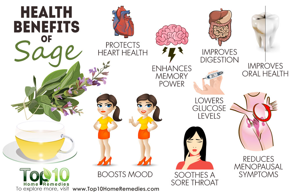 Top 10 Health Benefits of Sage.